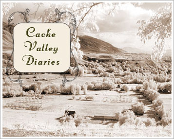 Cache Valley Diaries